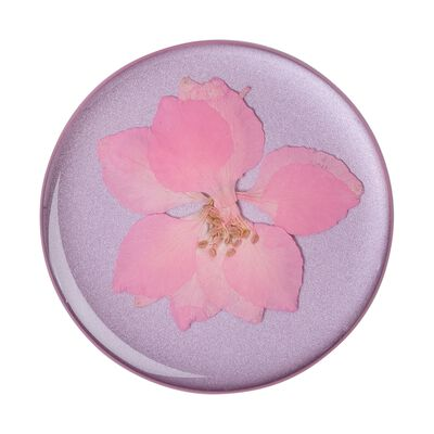Pressed Flower Delphinium Pink
